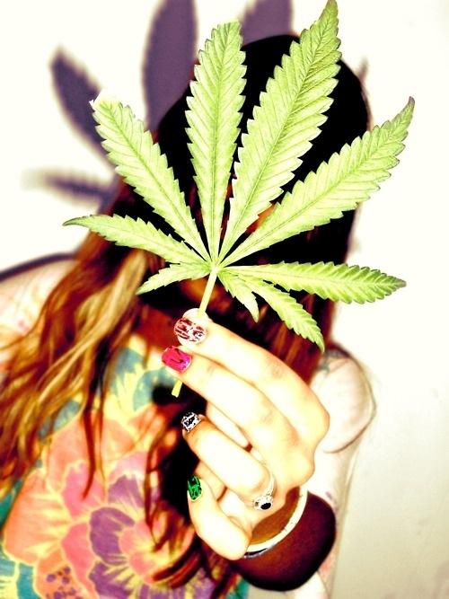 Pics of cars girls marijuana 10